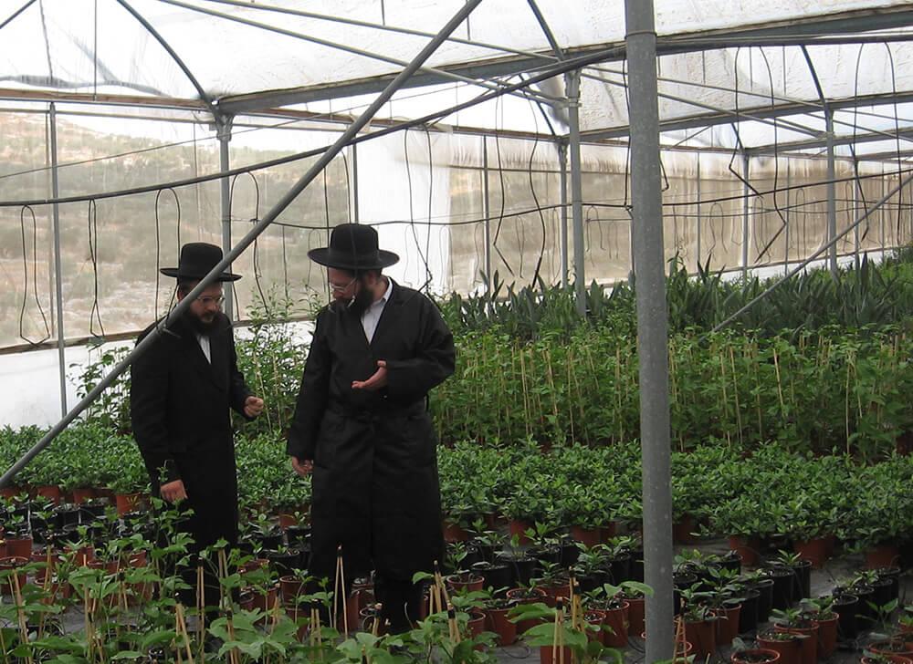הרבנים פרל ורוסק מרבני המכון בסיור בחממות